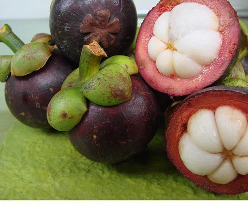 mangostan właściwy (Garcinia mangostana)